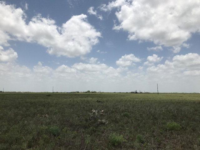 4313 Paredes Line Road, Brownsville, TX 78526 (MLS #209437) :: HSRGV Group