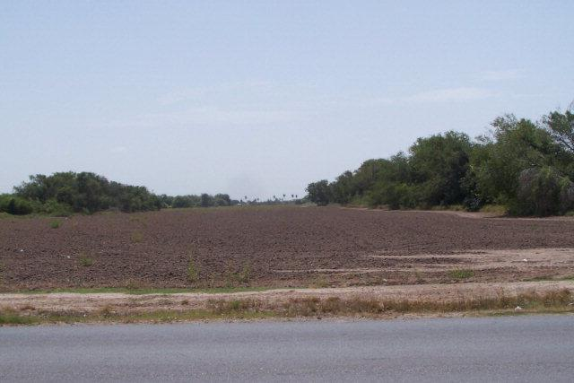 0 N Cesar Chavez Road, Alamo, TX 78516 (MLS #209819) :: Jinks Realty