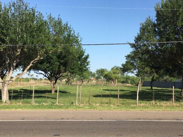 5 1/2 N Ware Road, Mcallen, TX 78504 (MLS #209911) :: The Ryan & Brian Team of Experts Advisors
