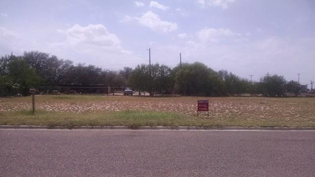 204 Rancho La Lomita, La Joya, TX 78560 (MLS #210507) :: The Lucas Sanchez Real Estate Team