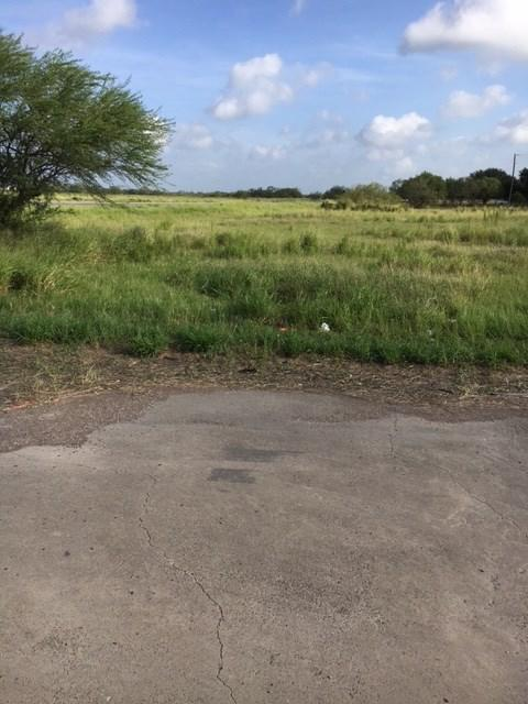 6815 Us Highway Business 281, Encino, TX 78353 (MLS #210811) :: Jinks Realty