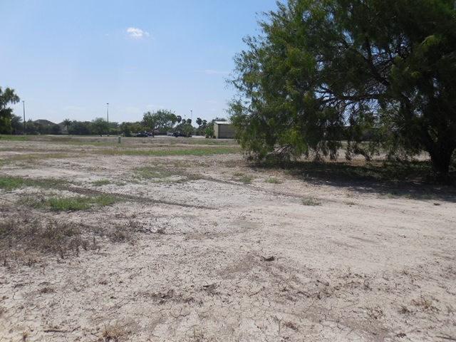 3716 Santa Inez, Mission, TX 78572 (MLS #210919) :: Jinks Realty