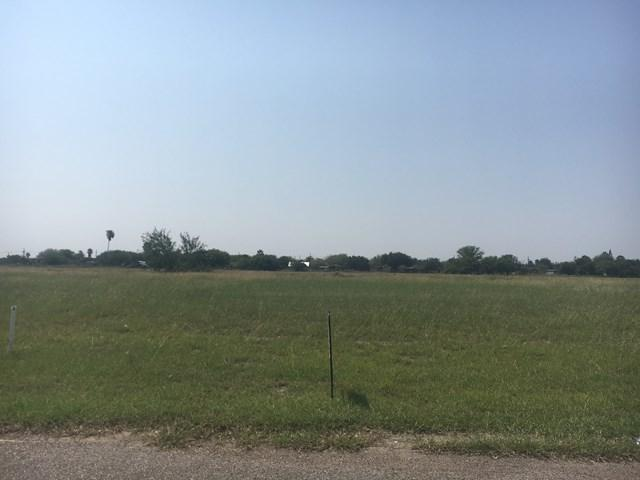 3901 Wolverine Road, San Juan, TX 78589 (MLS #211989) :: The Ryan & Brian Team of Experts Advisors