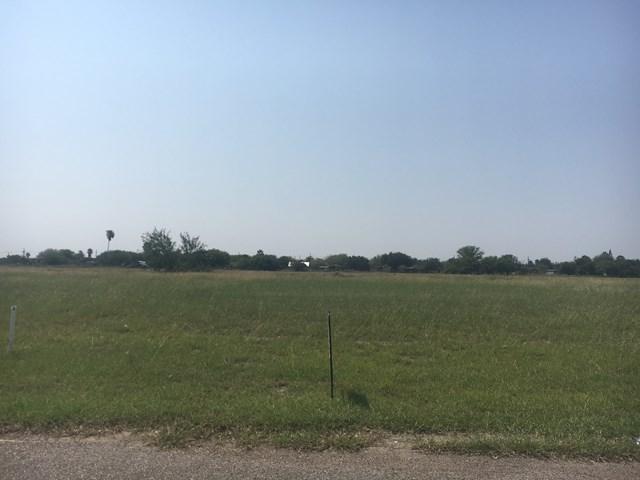 3901 Wolverine Road, San Juan, TX 78589 (MLS #211989) :: Jinks Realty