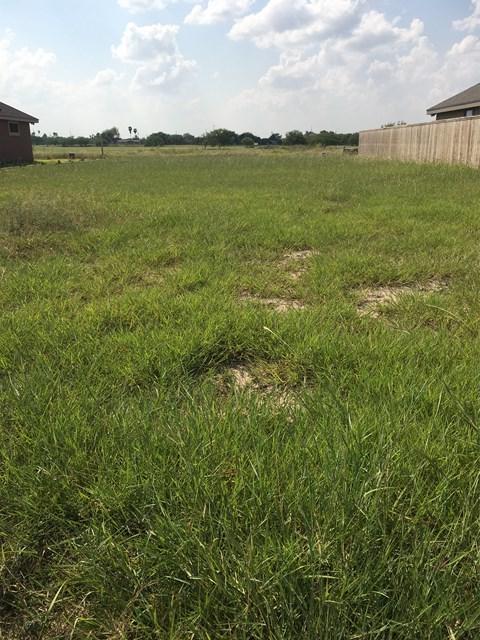 11207 N 32nd Lane, Mcallen, TX 78504 (MLS #212018) :: Jinks Realty