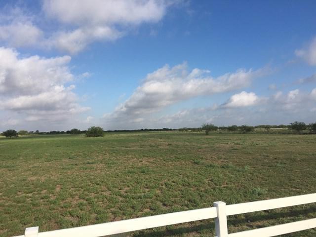 000 Aggie Drive, Linn, TX 78563 (MLS #212020) :: Jinks Realty