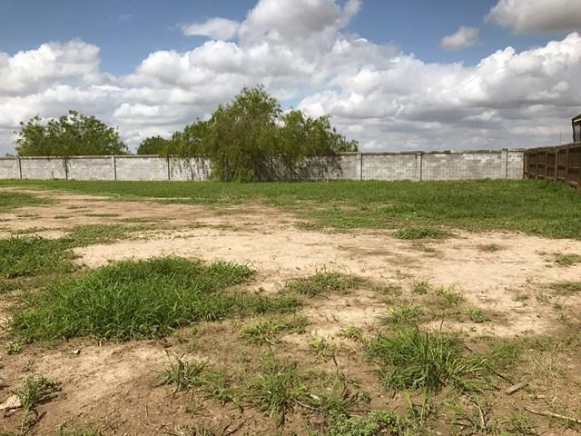 000 Coma Avenue, Hidalgo, TX 78557 (MLS #212049) :: Jinks Realty