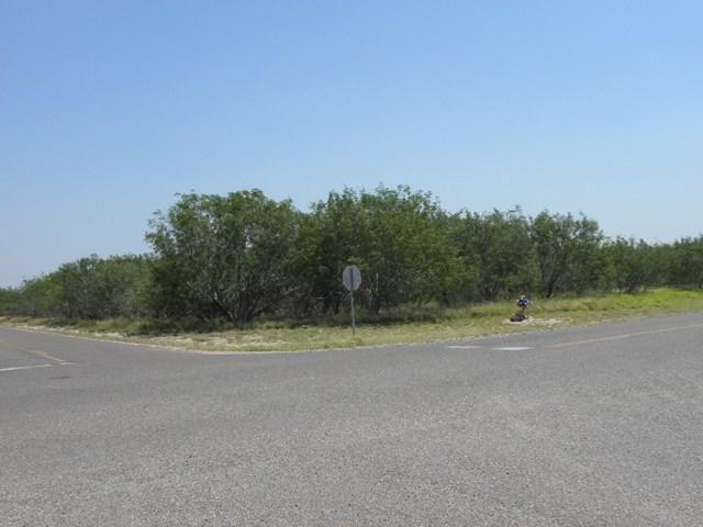 0 Mile 4, Penitas, TX 78576 (MLS #212348) :: The Lucas Sanchez Real Estate Team