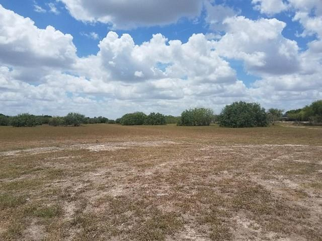 TBD Off S Border Avenue, Weslaco, TX 78596 (MLS #212594) :: eReal Estate Depot