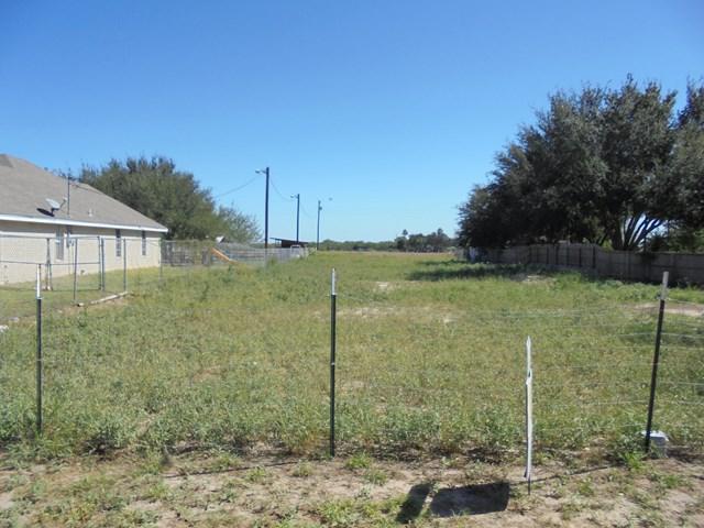 1310 S Dallas Street, Alton, TX 78573 (MLS #213506) :: Jinks Realty