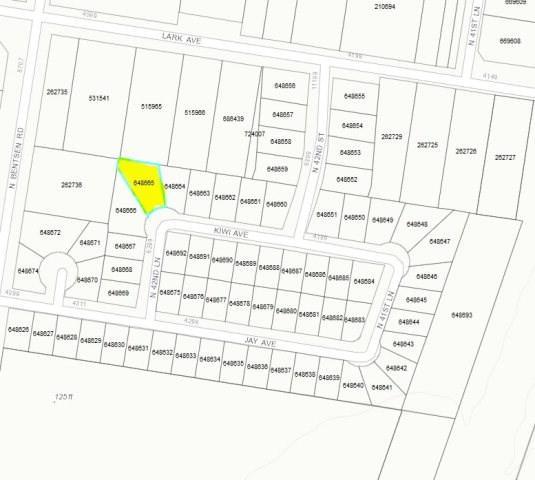 4220 W Kiwi Avenue, Mcallen, TX 78504 (MLS #214149) :: Jinks Realty
