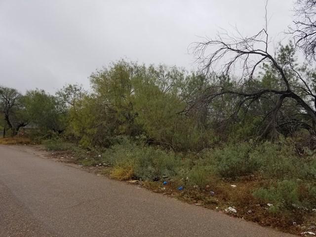 0 Narciso Pena Street, Rio Grande City, TX 78582 (MLS #214950) :: Jinks Realty