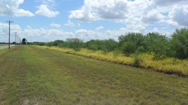 000 Ingle Road, Edinburg, TX 78541 (MLS #215206) :: Top Tier Real Estate Group