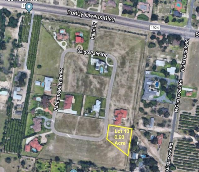 0 Coconut Palm Avenue, Mission, TX 78574 (MLS #215301) :: The Lucas Sanchez Real Estate Team