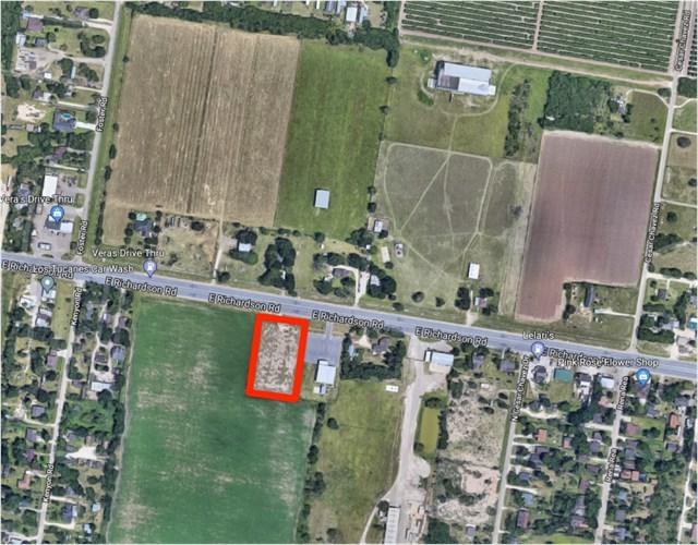 000 E Richardson Road, Edinburg, TX 78542 (MLS #215381) :: Jinks Realty