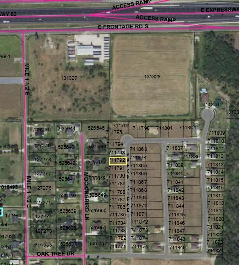 445 Aaron Street, Mercedes, TX 78570 (MLS #215895) :: Jinks Realty