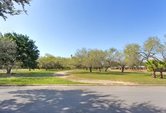 2 Old Orchard Road, Mcallen, TX 78503 (MLS #215980) :: Jinks Realty