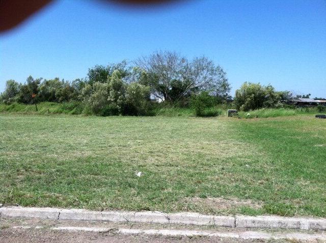 927 14th Street, Alamo, TX 78516 (MLS #216074) :: eReal Estate Depot