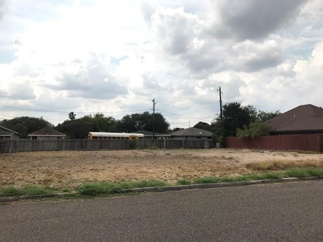 507 Paul Drive, Mcallen, TX 78572 (MLS #216079) :: Jinks Realty
