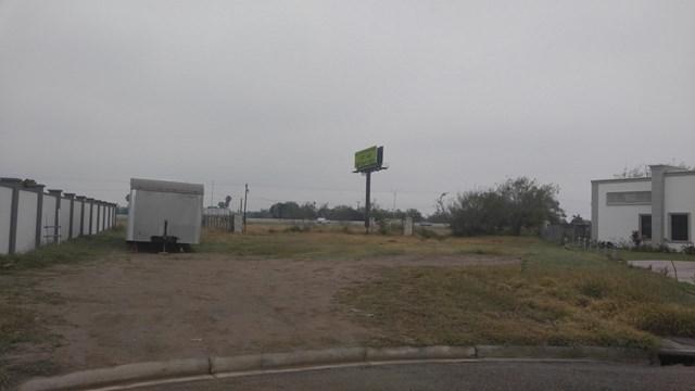 1715 Sebastian Drive, Mission, TX 78572 (MLS #216094) :: Jinks Realty