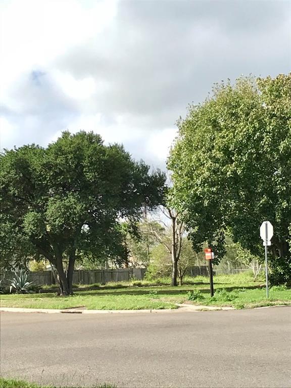 801 S 10th Street, Edinburg, TX 78539 (MLS #217234) :: eReal Estate Depot