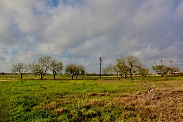 732 Minnesota Road, Donna, TX 78537 (MLS #217468) :: Jinks Realty