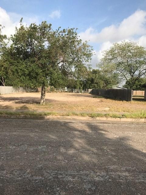 1113 N Dunlap Avenue, Mission, TX 78572 (MLS #217563) :: Top Tier Real Estate Group