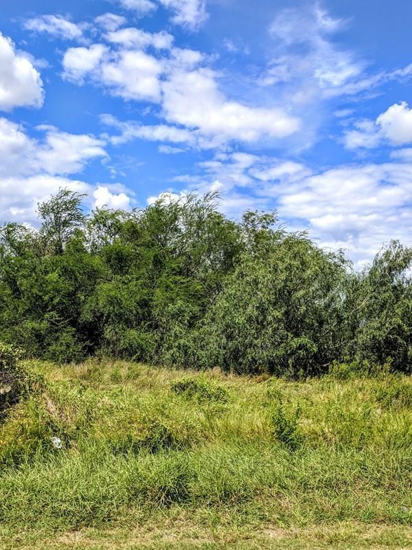 7122 E Rodgers Road, Edinburg, TX 78542 (MLS #217856) :: Top Tier Real Estate Group