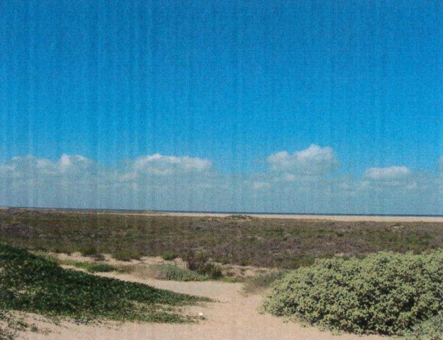 0 State Park Road 100, South Padre Island, TX 78597 (MLS #218303) :: The Deldi Ortegon Group and Keller Williams Realty RGV