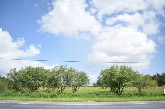 TBD Fm 493, Edinburg, TX 78558 (MLS #218618) :: The Lucas Sanchez Real Estate Team