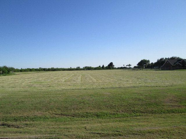 7316 &20 E State Highway 107, Edinburg, TX 78542 (MLS #219700) :: The Lucas Sanchez Real Estate Team