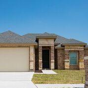 1335 N 11th Street, Alamo, TX 78516 (MLS #219845) :: Newmark Real Estate Group