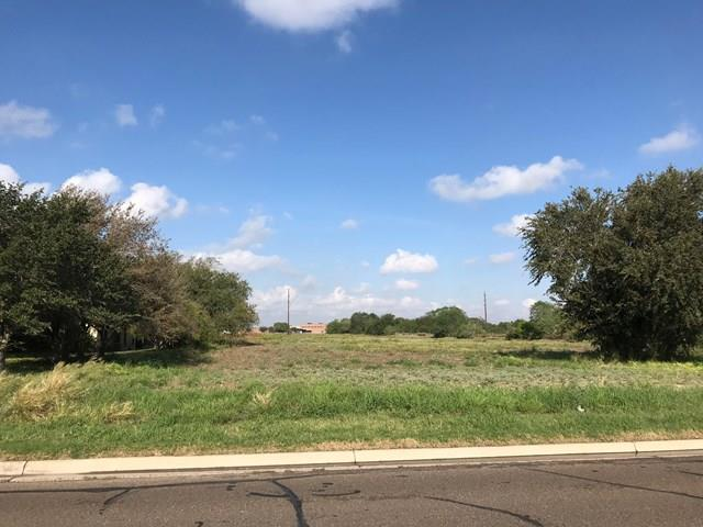 000 N Mccoll Road, Edinburg, TX 78541 (MLS #221726) :: Berkshire Hathaway HomeServices RGV Realty