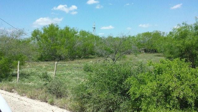 0 N El Pinto Road N, Sullivan City, TX 78595 (MLS #302780) :: Berkshire Hathaway HomeServices RGV Realty