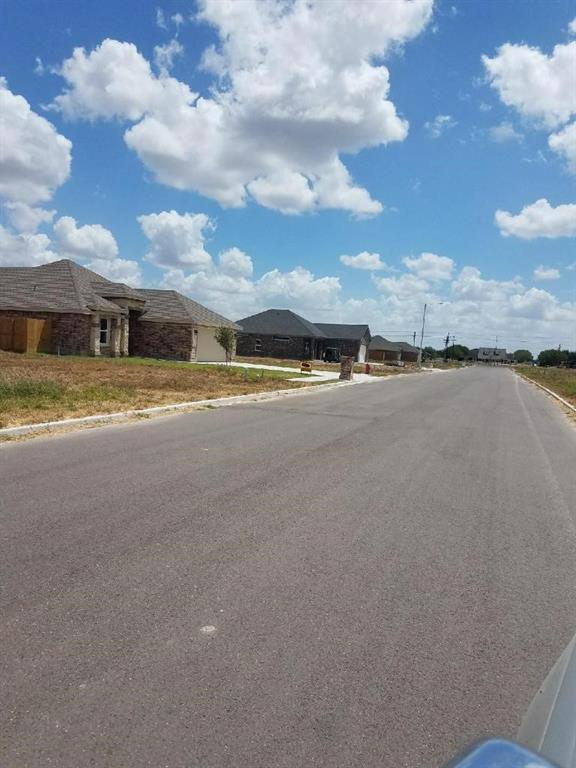 1119 Boulder Drive, Alamo, TX 78516 (MLS #302834) :: Jinks Realty