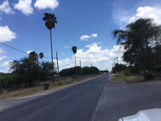 711 N Cesar Chavez Road, Alamo, TX 78516 (MLS #303238) :: The Ryan & Brian Real Estate Team