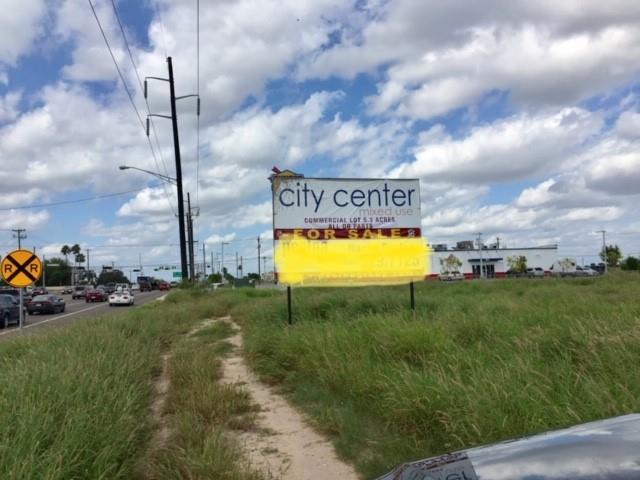 127 S Ware Road, Mcallen, TX 78501 (MLS #304751) :: Jinks Realty