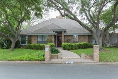 224 E Lark Avenue, Mcallen, TX 78504 (MLS #304871) :: Jinks Realty