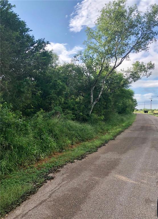 0 N Lion Lake Drive N, Progreso Lakes, TX 78596 (MLS #305105) :: HSRGV Group