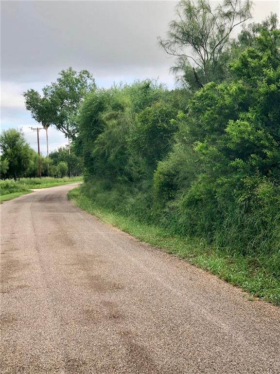 0 N Lion Lake Drive, Progreso Lakes, TX 78596 (MLS #305108) :: HSRGV Group