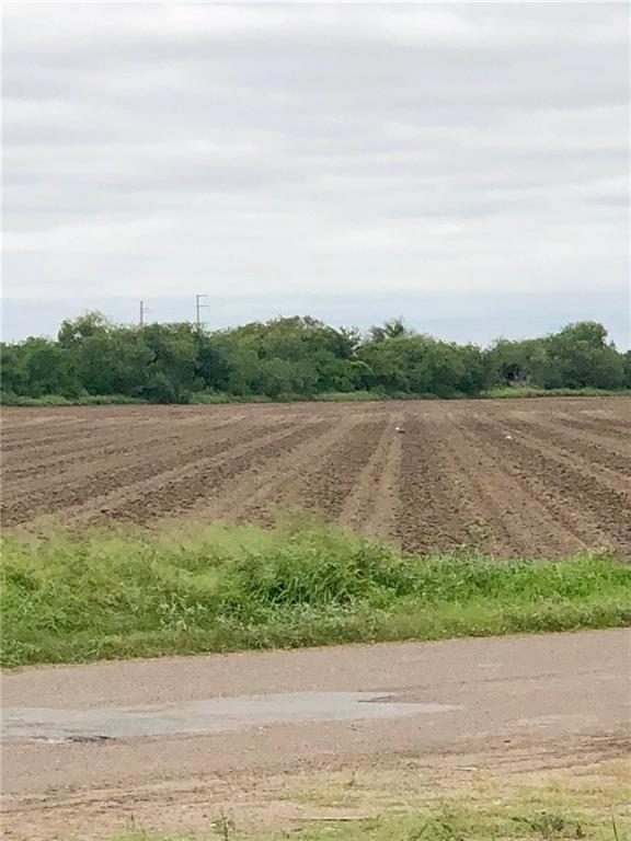 NN S Fm 493 Road, Donna, TX 78537 (MLS #305189) :: eReal Estate Depot