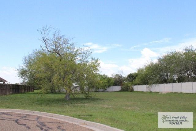 Lot 13 Weighost Street, Harlingen, TX 78552 (MLS #305215) :: The Ryan & Brian Real Estate Team