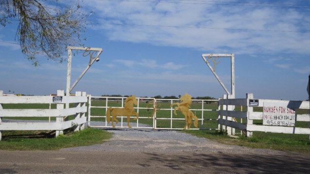 0 Hall Acres Road, San Juan, TX 78589 (MLS #305733) :: The Ryan & Brian Real Estate Team