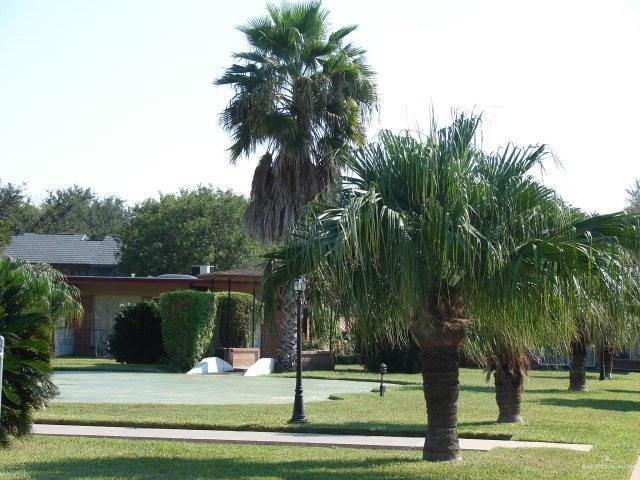 800 E Dallas Avenue E #31, Mcallen, TX 78501 (MLS #305876) :: Berkshire Hathaway HomeServices RGV Realty