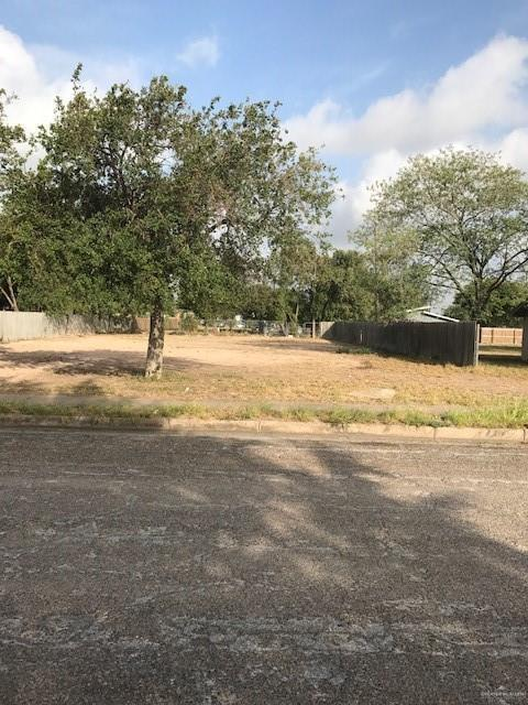 1113 N Dunlap Avenue, Mission, TX 78572 (MLS #306194) :: Jinks Realty