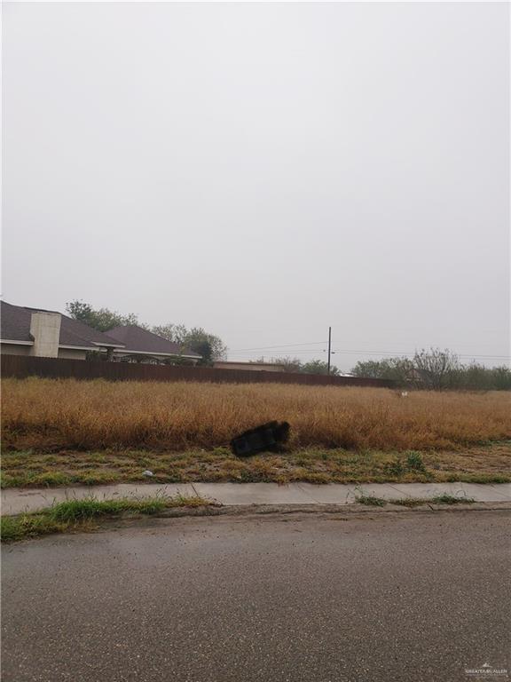 000 Granite Drive, Penitas, TX 78576 (MLS #308186) :: Jinks Realty