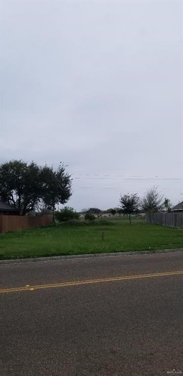 2913 W Iris Avenue, Mcallen, TX 78501 (MLS #310427) :: The Ryan & Brian Real Estate Team