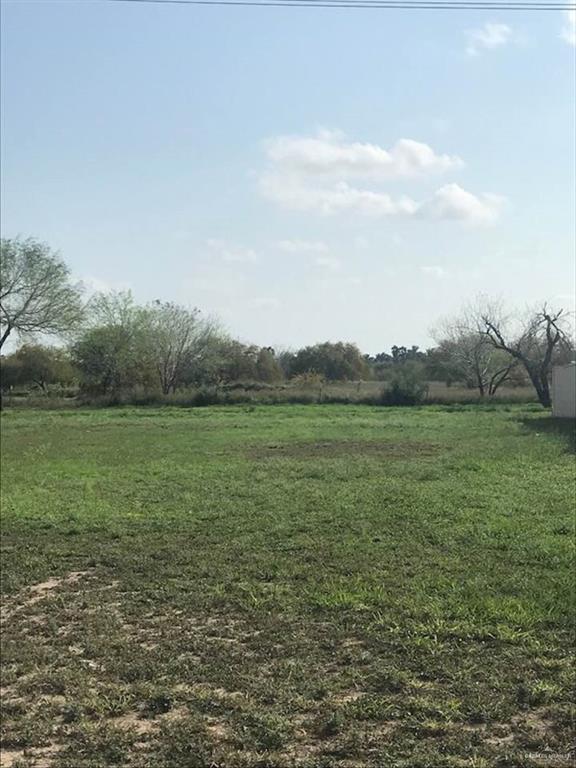 131 San Jacinto, Mission, TX 78572 (MLS #310674) :: eReal Estate Depot