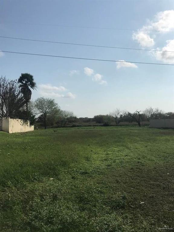 133 San Jacinto, Mission, TX 78572 (MLS #310675) :: eReal Estate Depot