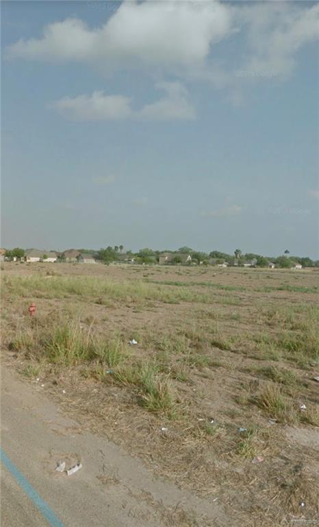 3406 Triple J Drive, Palmview, TX 78572 (MLS #311422) :: HSRGV Group